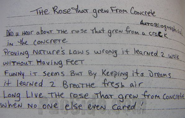 the rose that grew from concrete poem